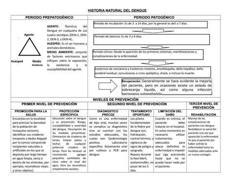 daño hepatico e infeccion pdf