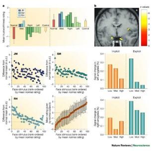 cognitive neuroscience of human social behaviour nature reviews neuroscience pdf