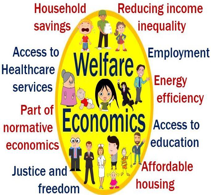 a critique of welfare economics pdf