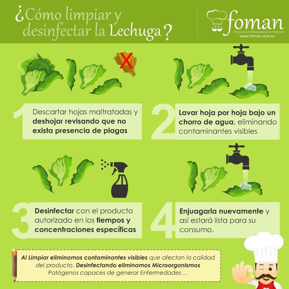 como desinfectar los alimentos pdf
