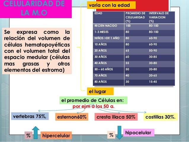 aspiracion de medula osea pdf