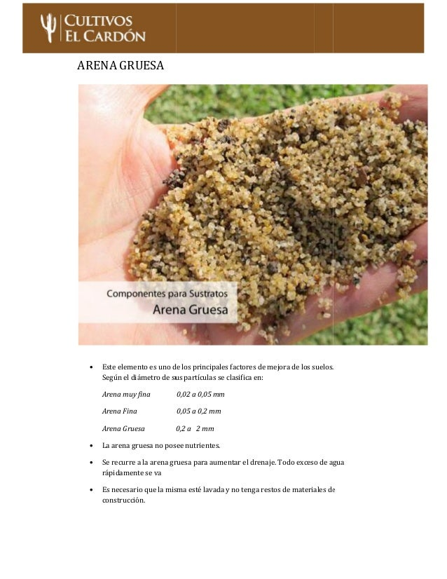 cultivo de cactus y suculentas pdf