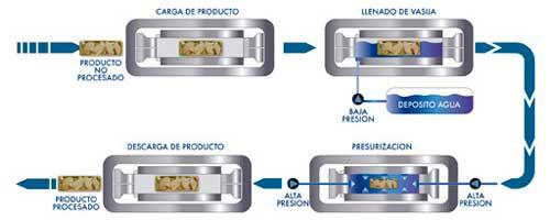 campo magnetico en alimentos pdf