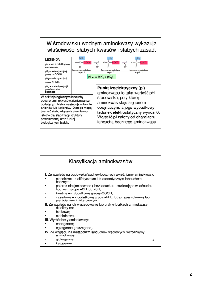 berg jeremy bioquimica pdf gratis