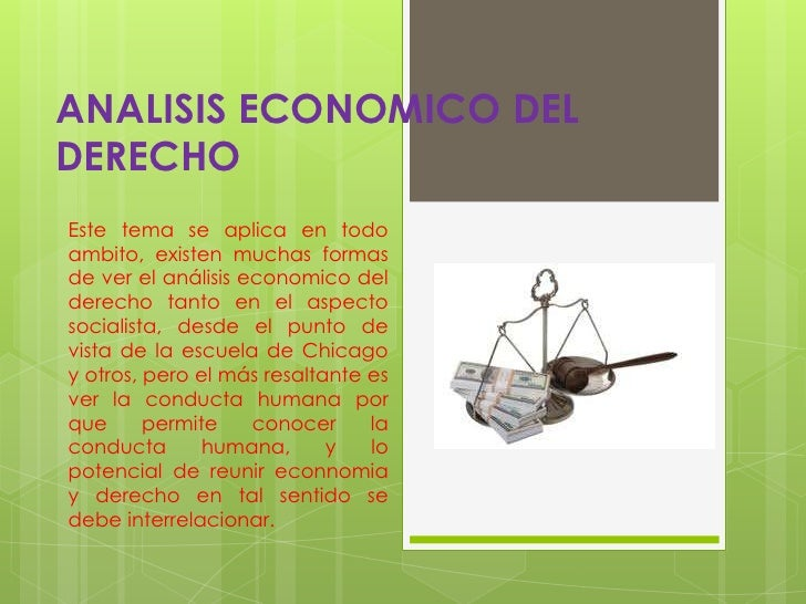 análisis económico del derecho pdf