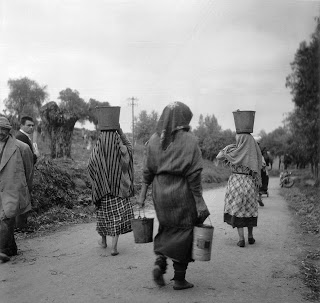 bourdieu antropología en argelia pdf