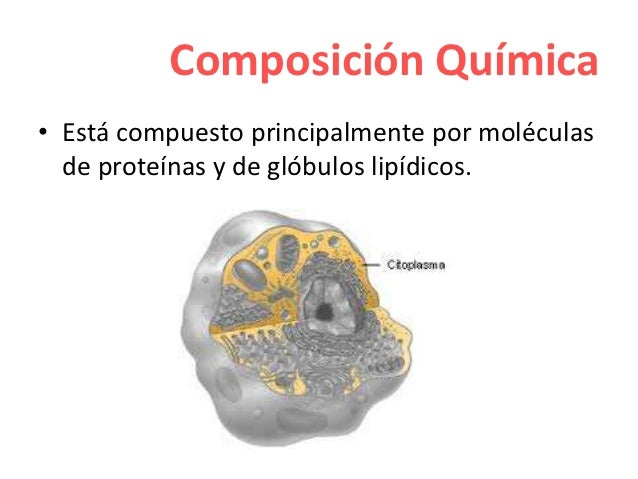 composicion quimica del protoplasma pdf