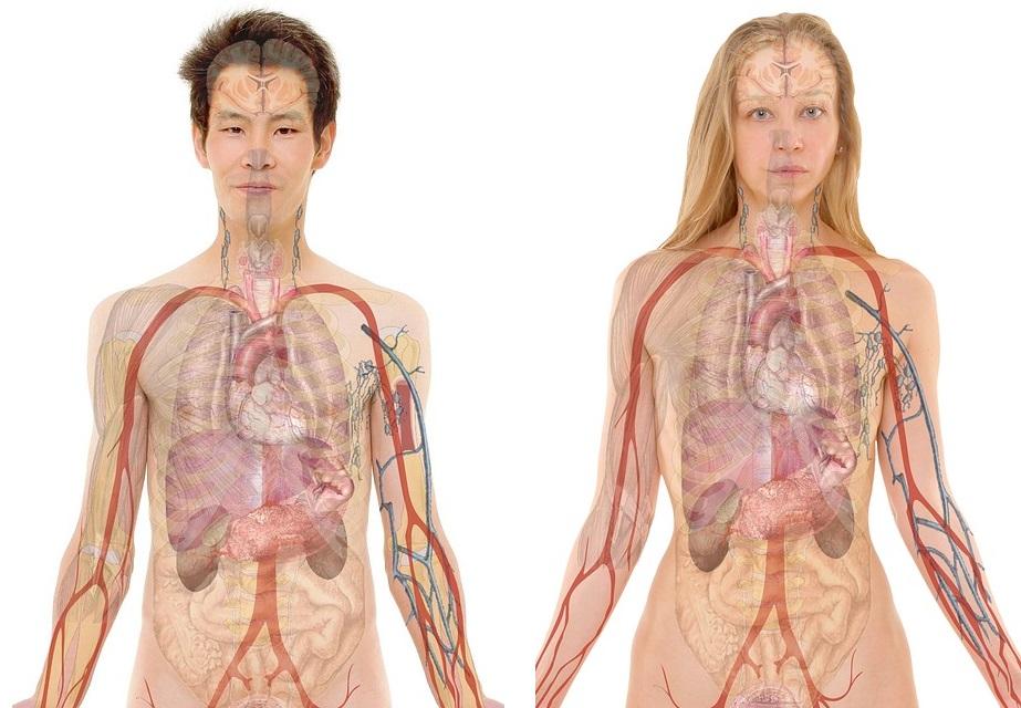 condiciones para que un cuerpo posea mru