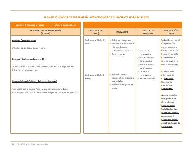 cuidados de enfermeria en pacientes psiquiatricos pdf